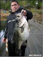 """Mike Winn posing with \""""Dottie\"""" (Caught by Weakley) at 25.1lbs (March 2006)"""
